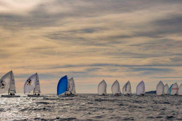 sailing-team